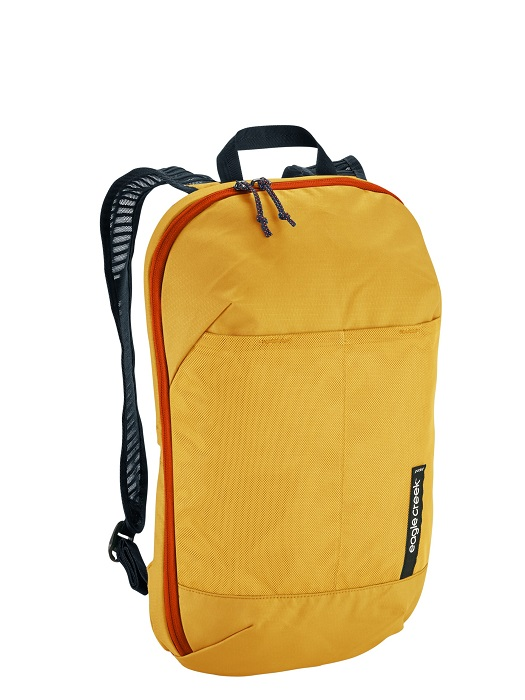 Eagle Creek Reveal Org Convertible Pack